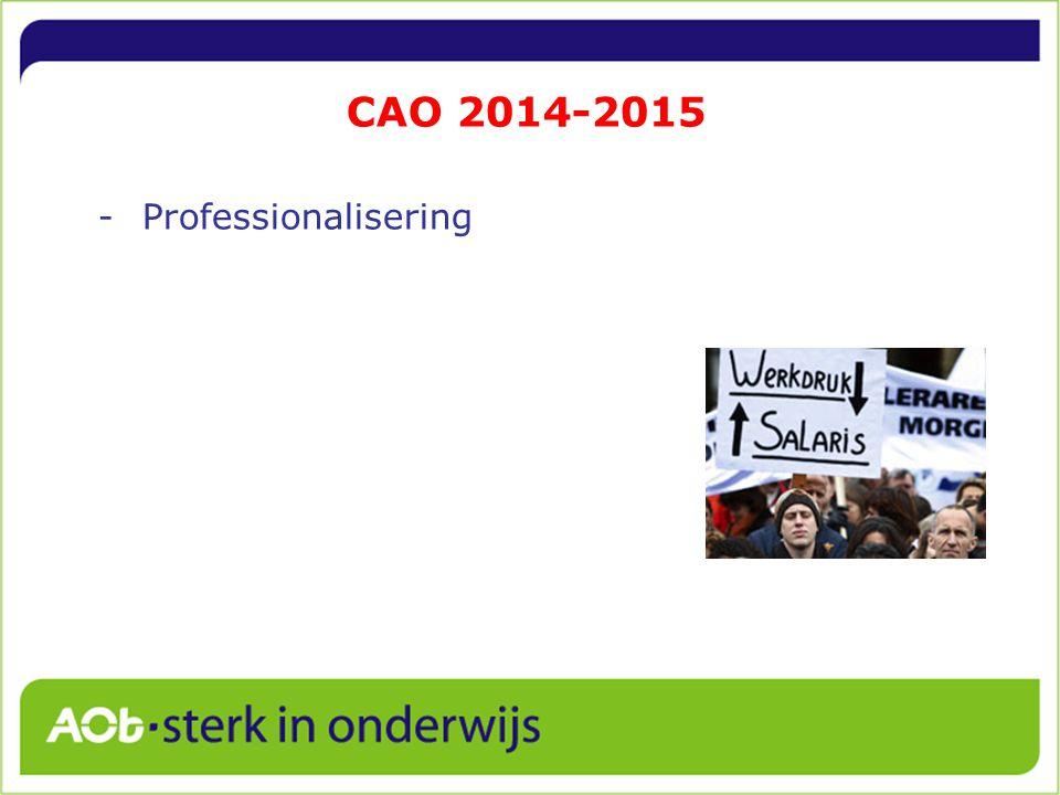 CAO 2014-2015 Professionalisering 6
