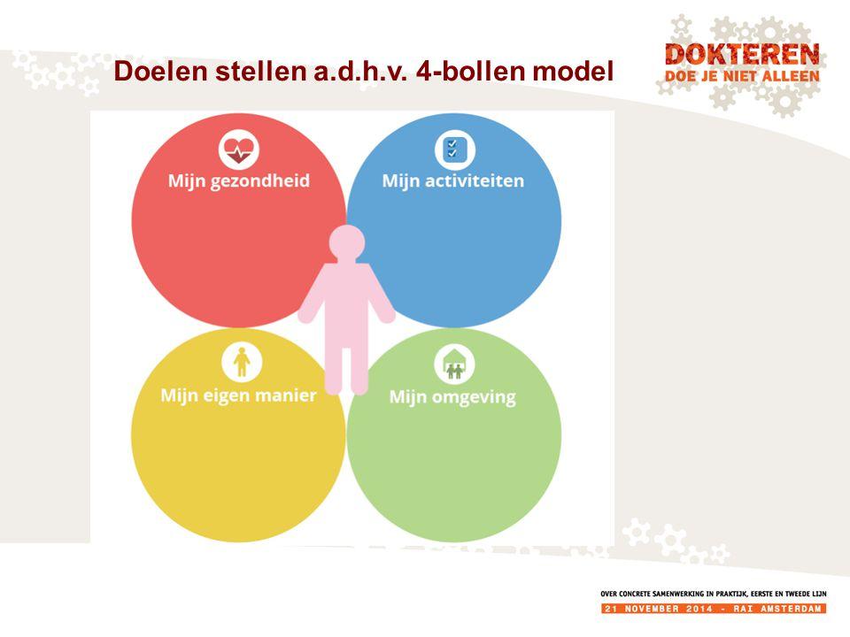 Doelen stellen a.d.h.v. 4-bollen model