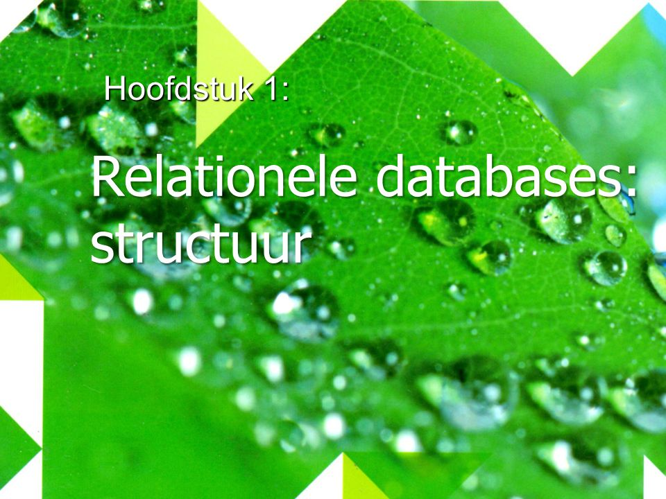 Relationele databases: structuur