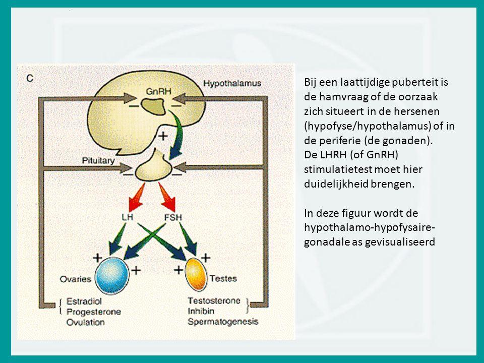 Bij een laattijdige puberteit is de hamvraag of de oorzaak zich situeert in de hersenen (hypofyse/hypothalamus) of in de periferie (de gonaden).
