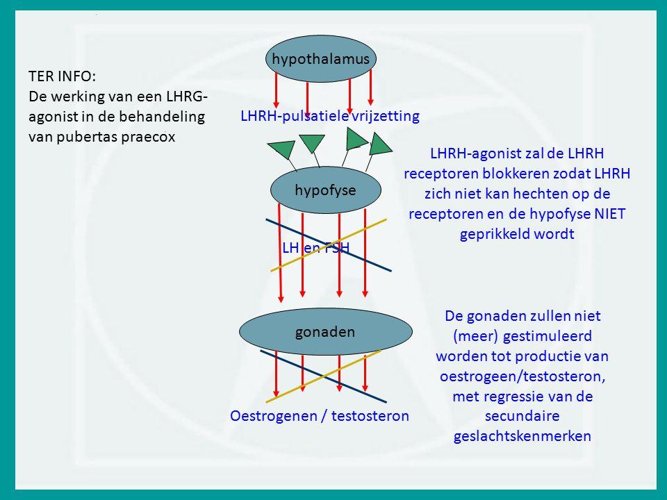 hypothalamus TER INFO: De werking van een LHRG-agonist in de behandeling van pubertas praecox. LHRH-pulsatiele vrijzetting.