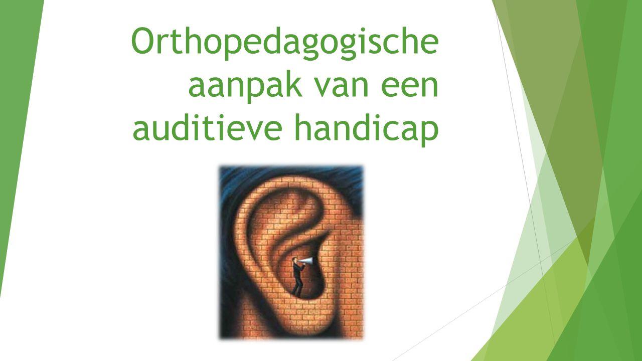 Orthopedagogische aanpak van een auditieve handicap