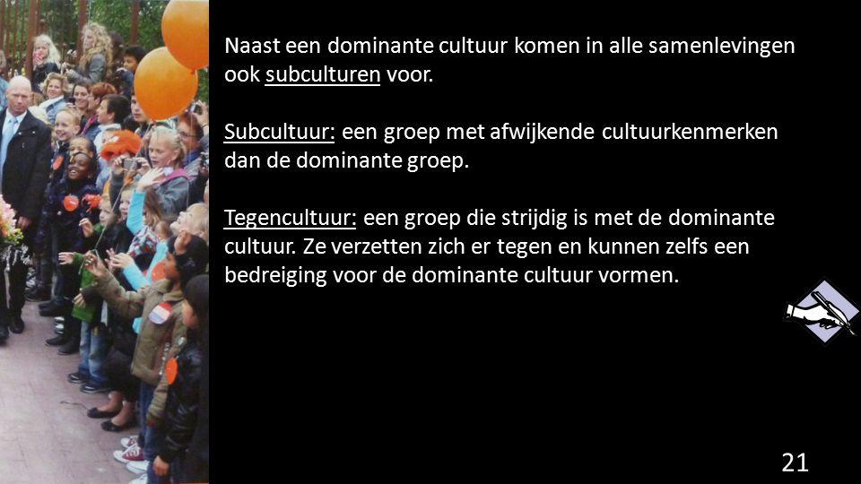 Naast een dominante cultuur komen in alle samenlevingen ook subculturen voor.