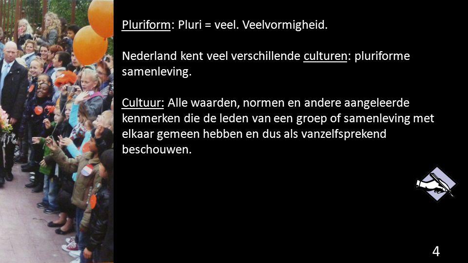 Pluriform: Pluri = veel. Veelvormigheid.