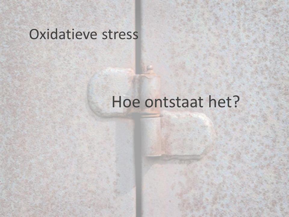 Oxidatieve stress Hoe ontstaat het