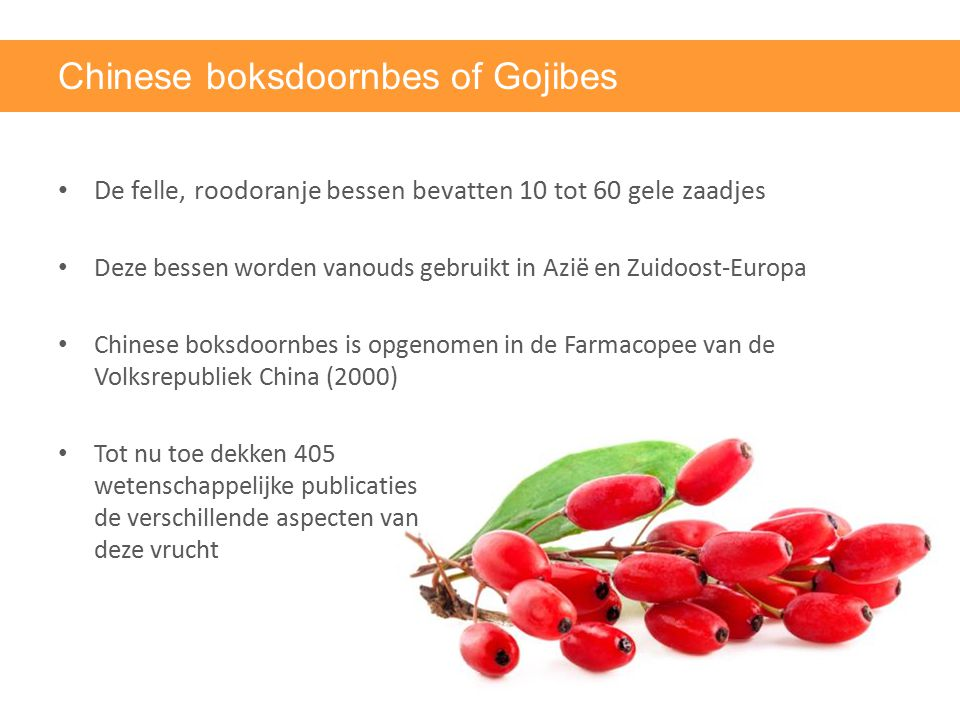 Chinese boksdoornbes of Gojibes