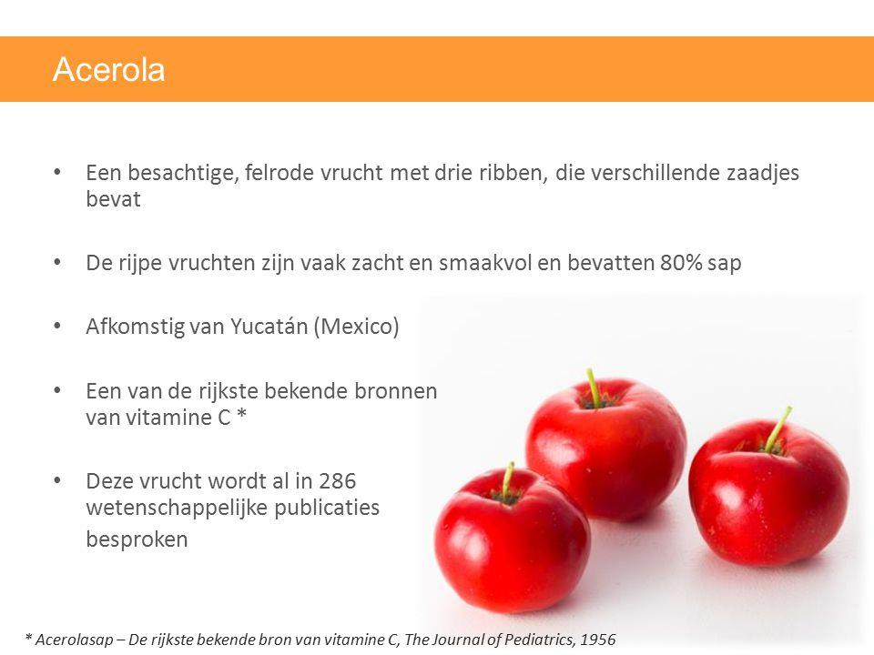 Acerola Een besachtige, felrode vrucht met drie ribben, die verschillende zaadjes bevat.