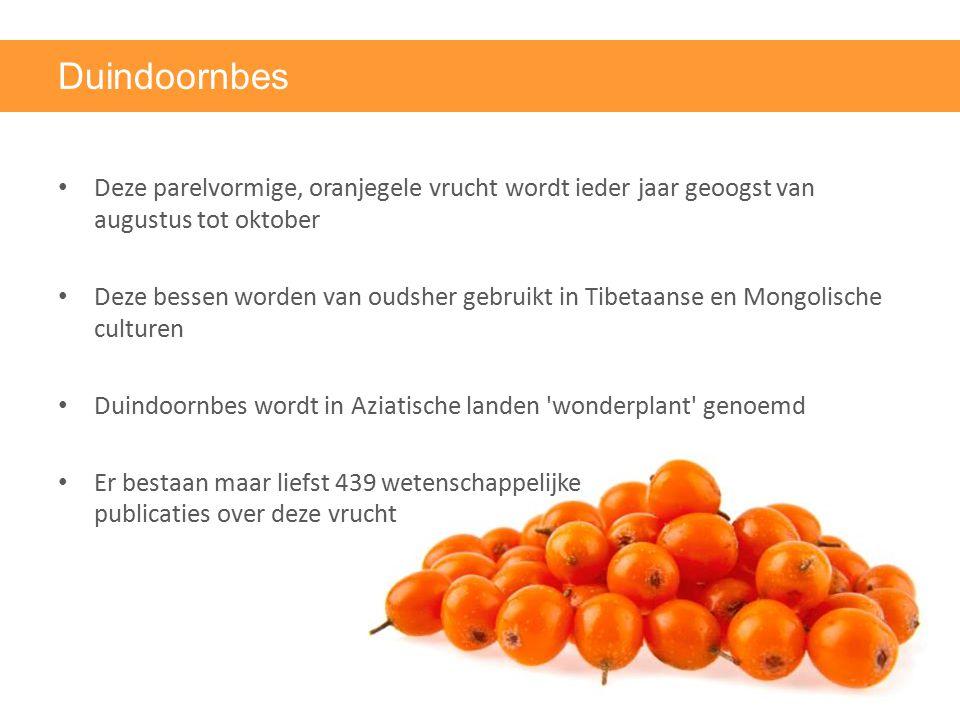 Duindoornbes Deze parelvormige, oranjegele vrucht wordt ieder jaar geoogst van augustus tot oktober.