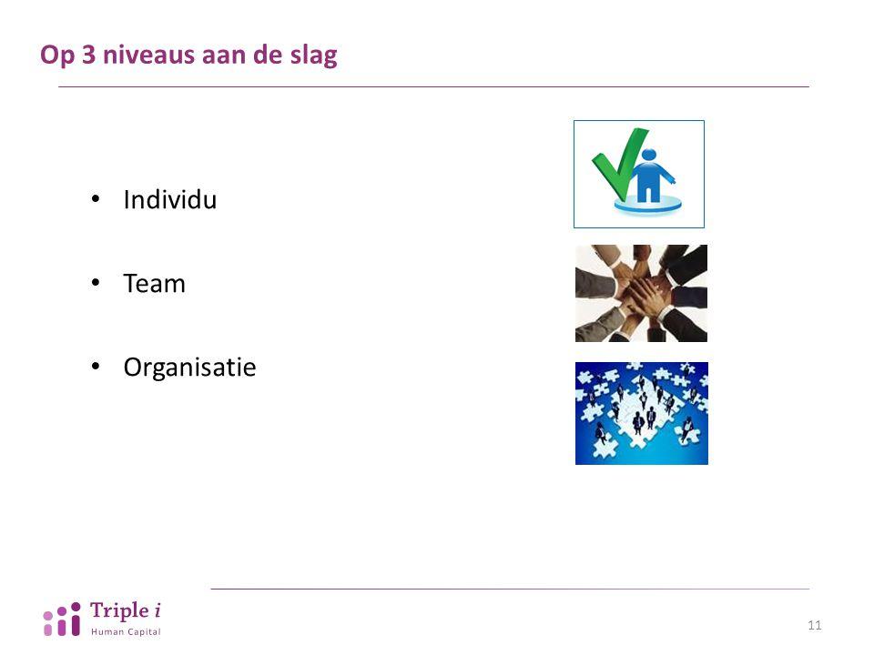 Op 3 niveaus aan de slag Individu Team Organisatie