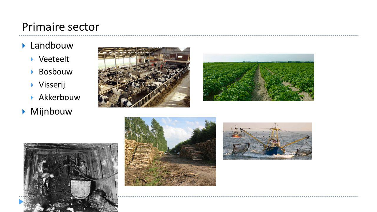 Primaire sector Landbouw Veeteelt Bosbouw Visserij Akkerbouw Mijnbouw