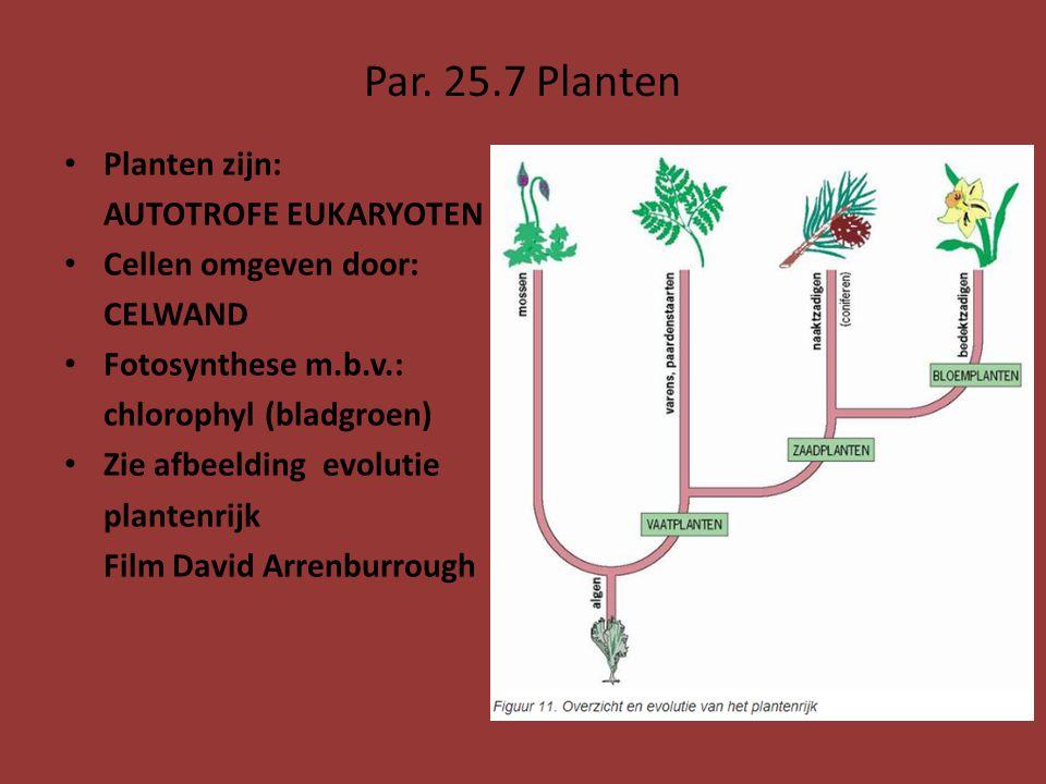 Par. 25.7 Planten Planten zijn: AUTOTROFE EUKARYOTEN