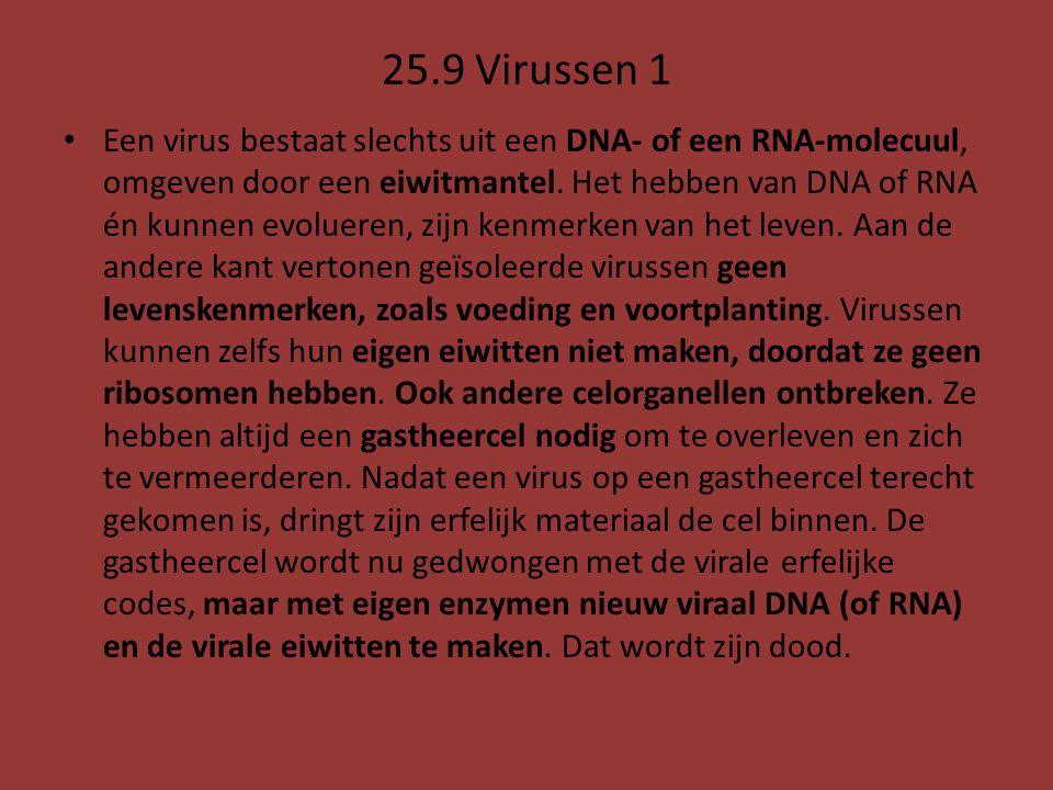 25.9 Virussen 1