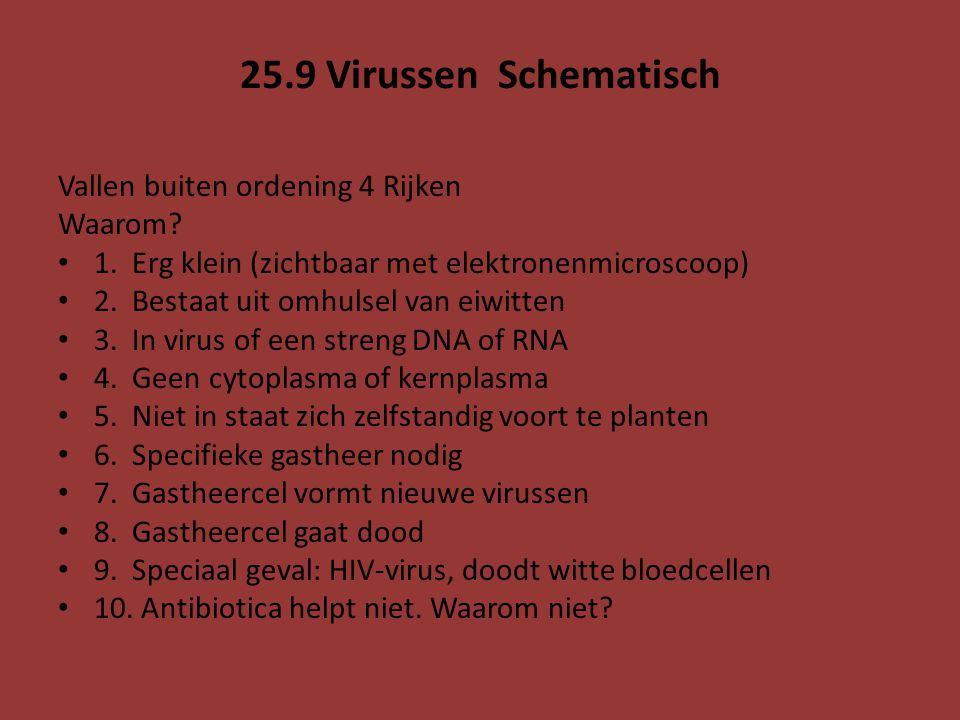 25.9 Virussen Schematisch Vallen buiten ordening 4 Rijken Waarom