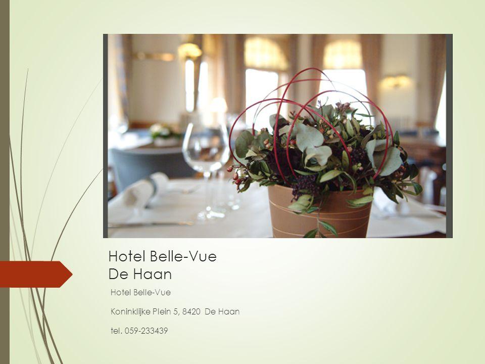 Hotel Belle-Vue De Haan
