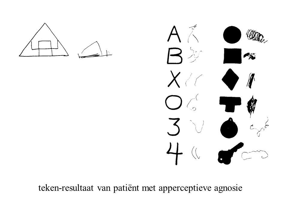 teken-resultaat van patiënt met apperceptieve agnosie