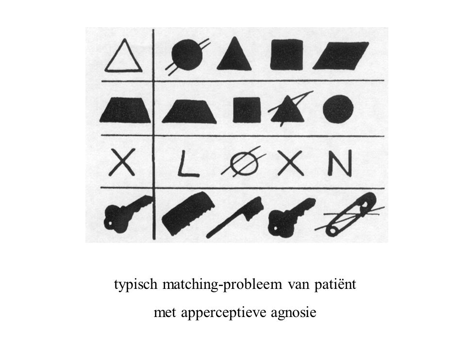 typisch matching-probleem van patiënt met apperceptieve agnosie