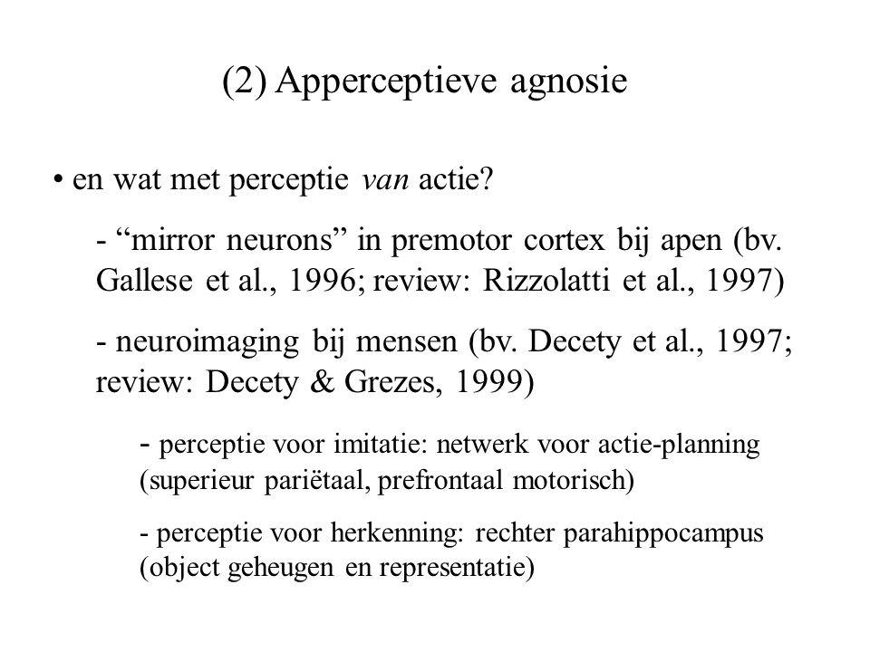 (2) Apperceptieve agnosie