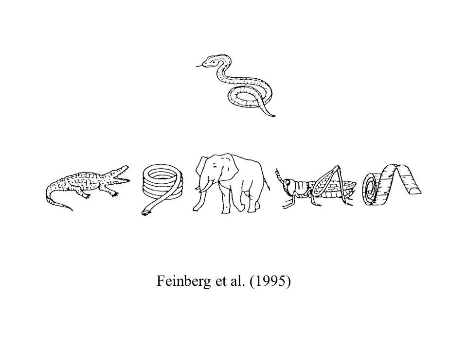 Feinberg et al. (1995)