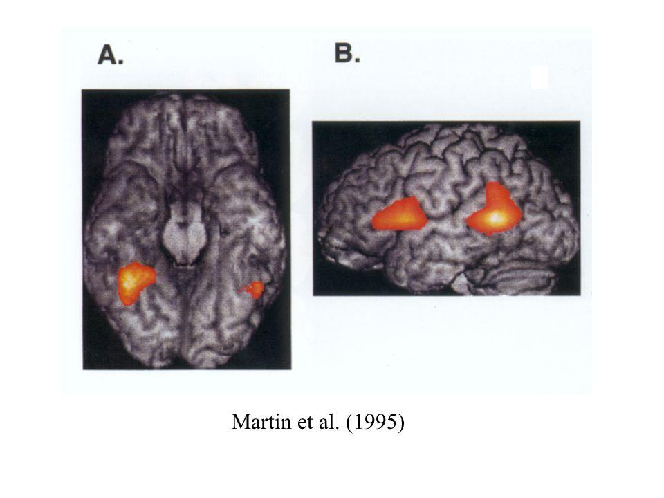 Martin et al. (1995)
