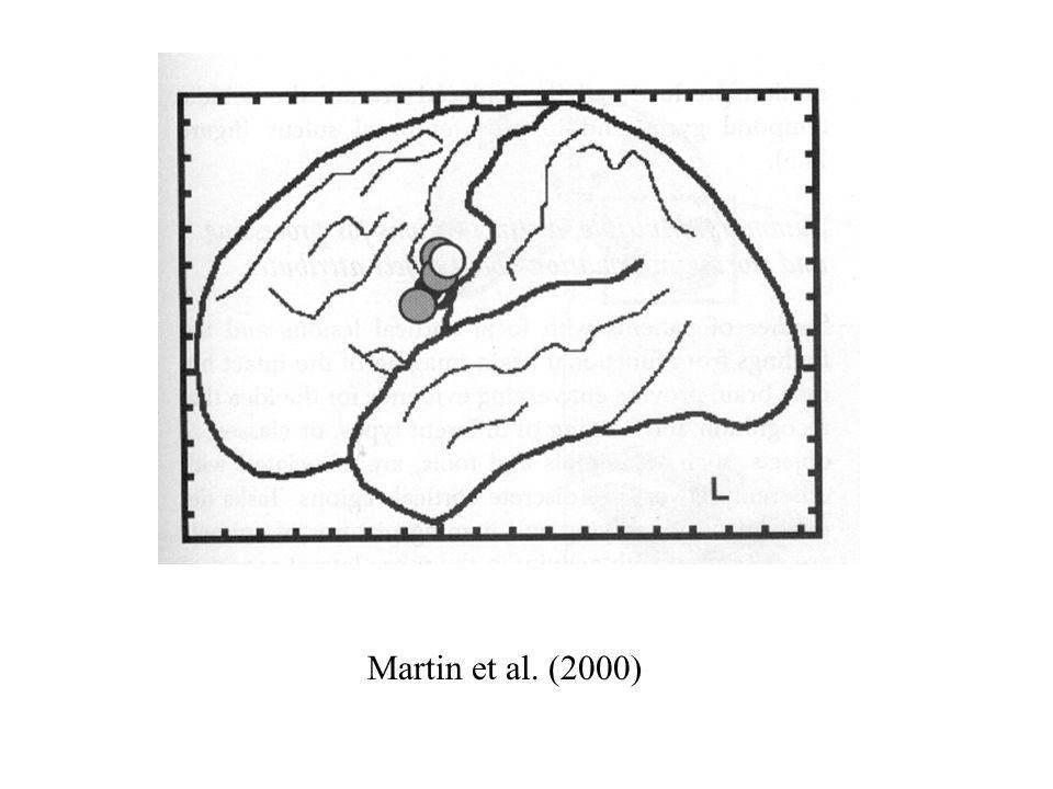Martin et al. (2000)