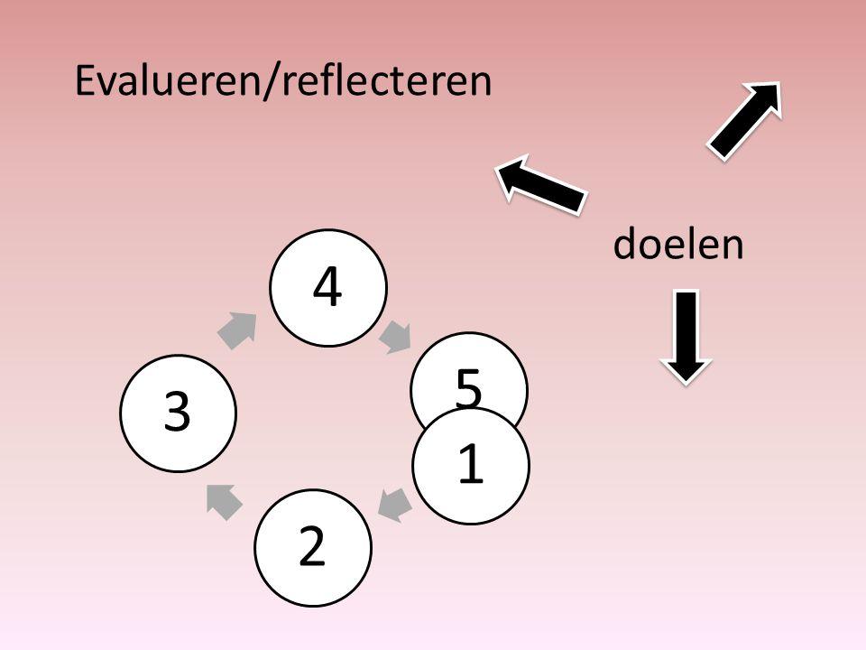Evalueren/reflecteren