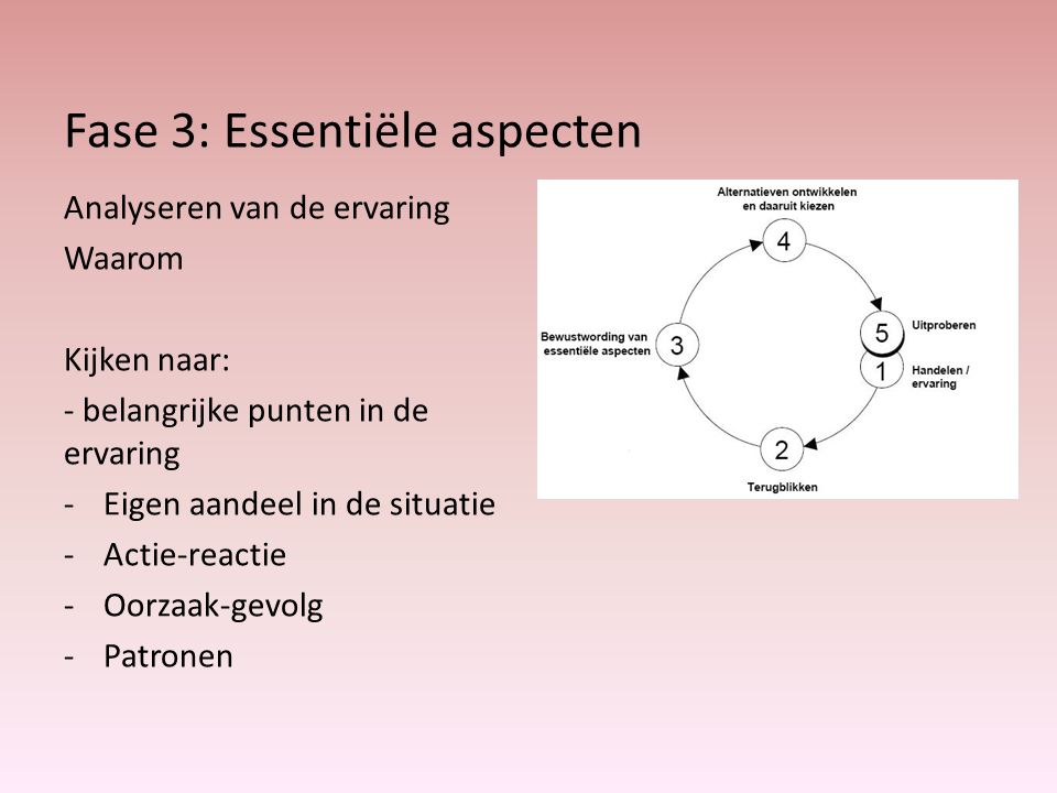 Fase 3: Essentiële aspecten