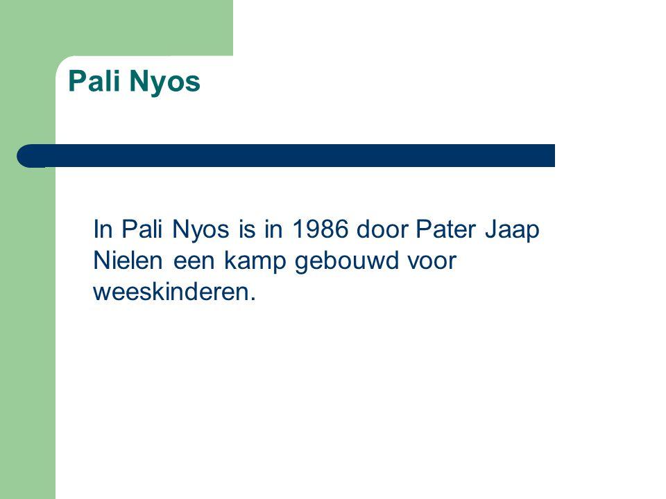 Pali Nyos In Pali Nyos is in 1986 door Pater Jaap Nielen een kamp gebouwd voor weeskinderen.
