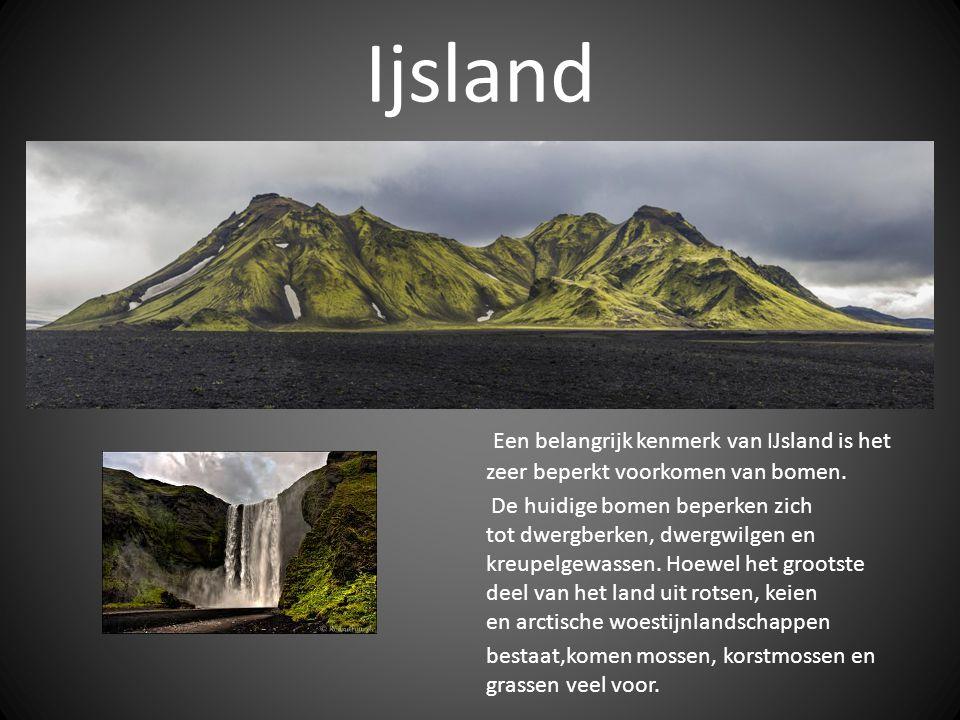 Ijsland Een belangrijk kenmerk van IJsland is het zeer beperkt voorkomen van bomen.