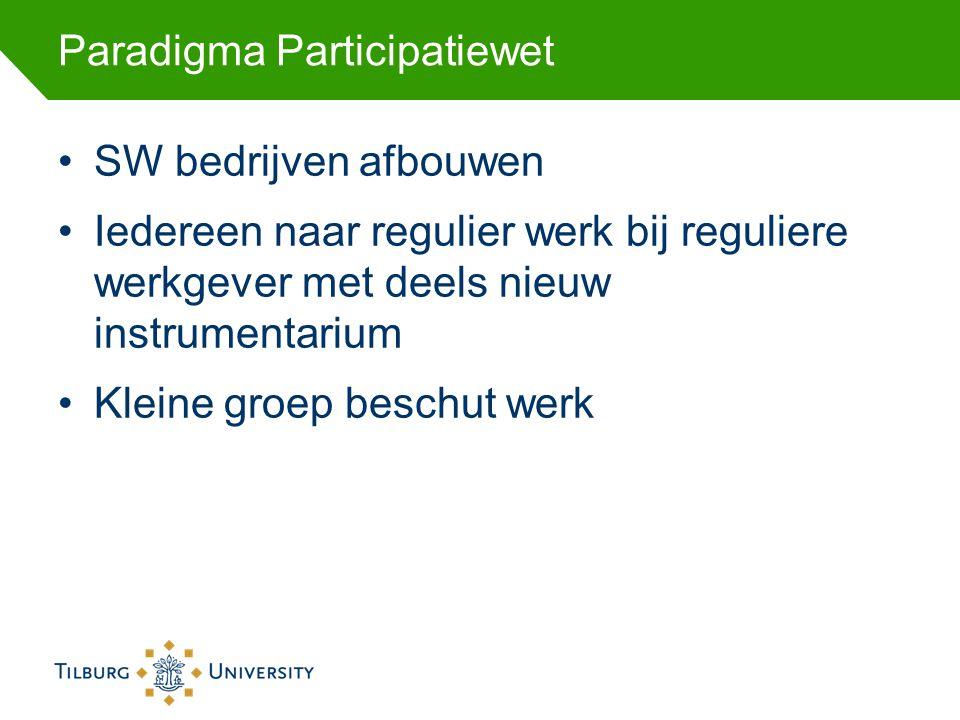 Paradigma Participatiewet