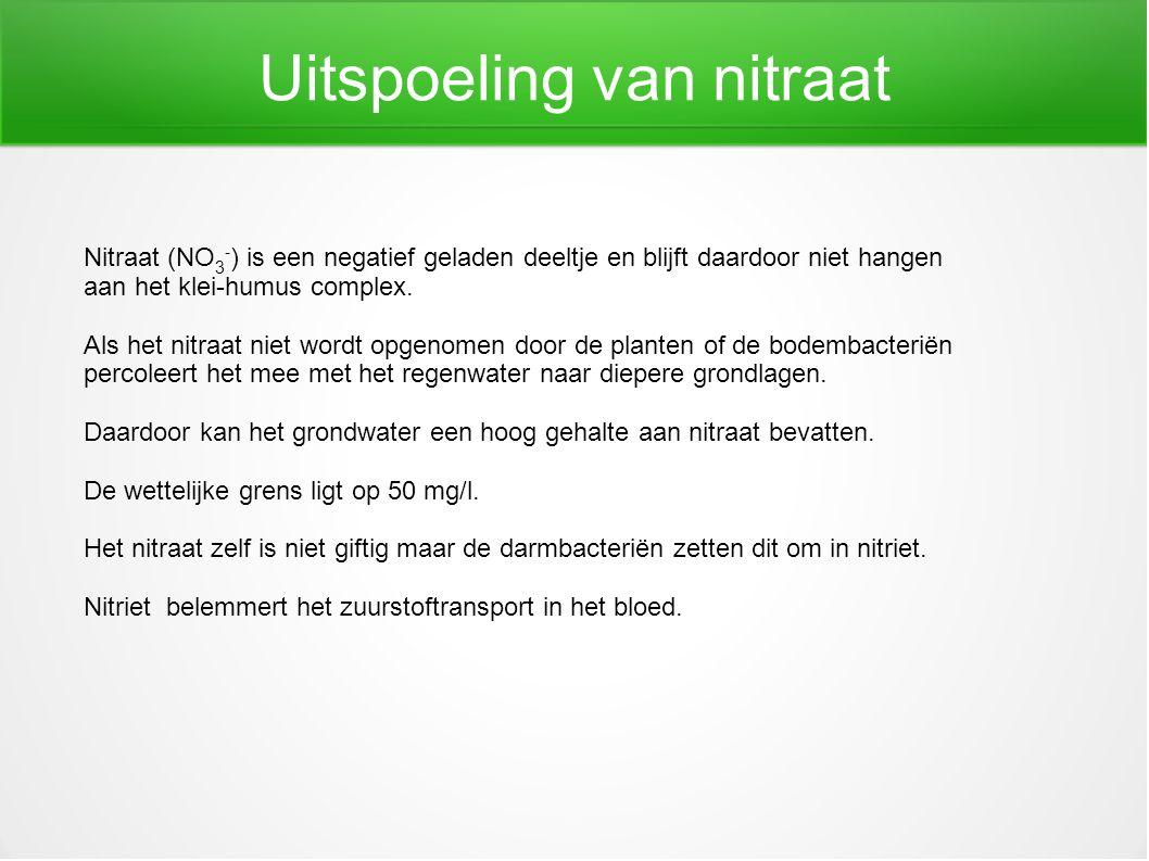 Uitspoeling van nitraat