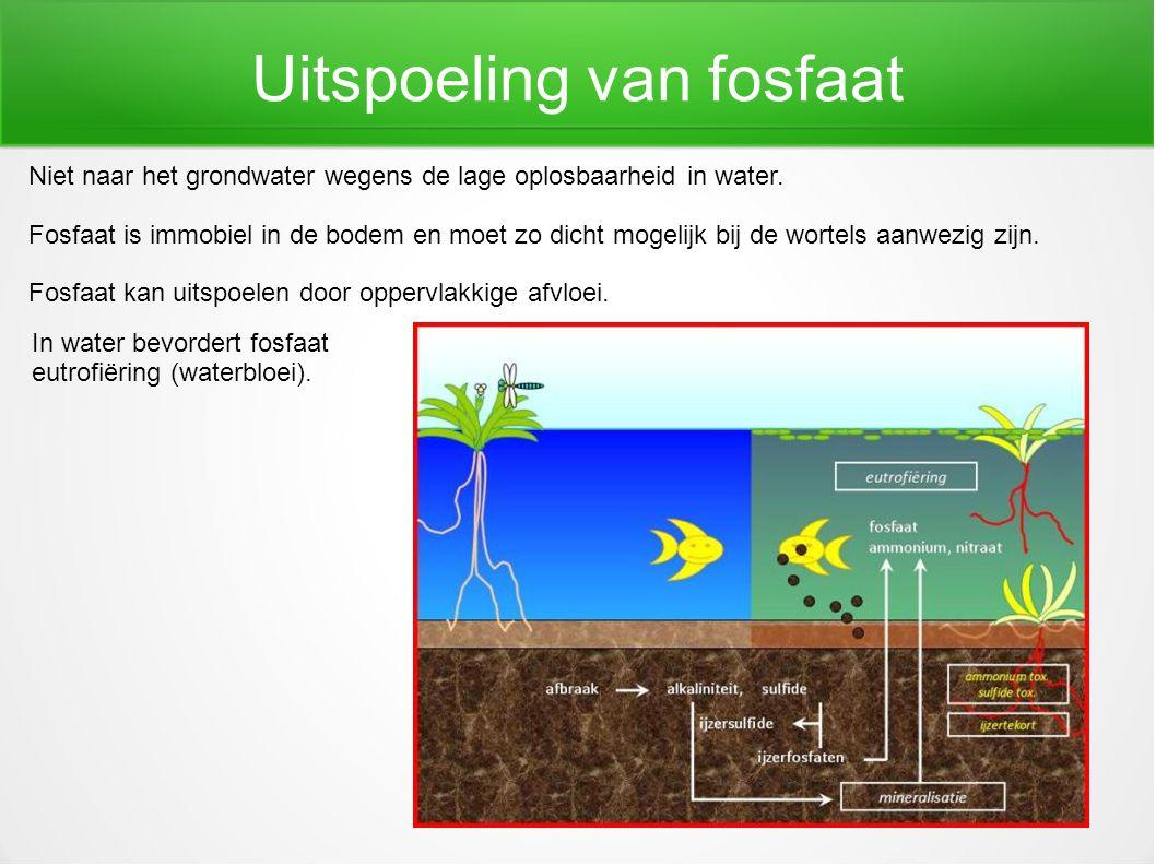 Uitspoeling van fosfaat