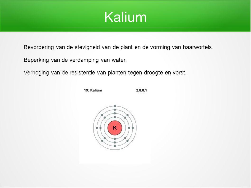 Kalium Bevordering van de stevigheid van de plant en de vorming van haarwortels. Beperking van de verdamping van water.