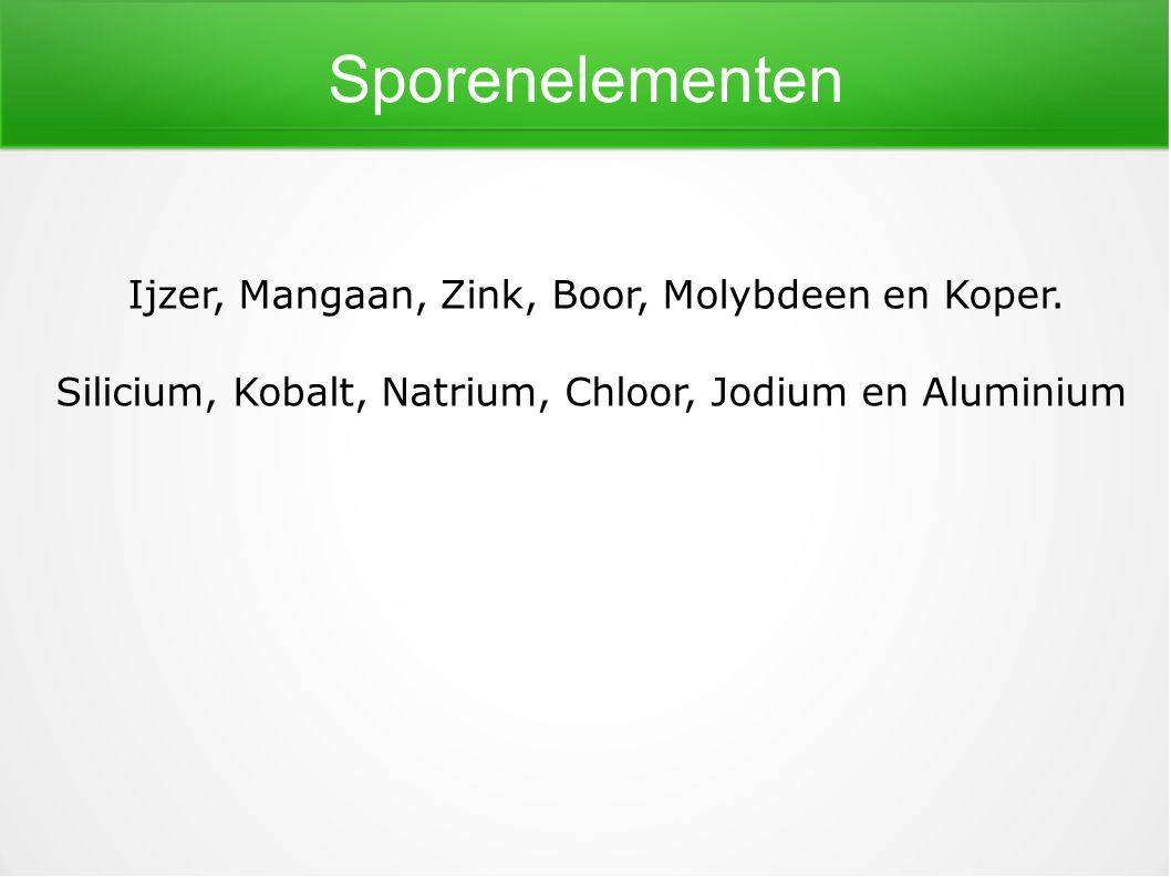 Sporenelementen Ijzer, Mangaan, Zink, Boor, Molybdeen en Koper.