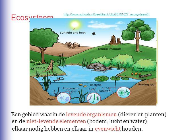 Ecosysteem Een gebied waarin de levende organismen (dieren en planten)