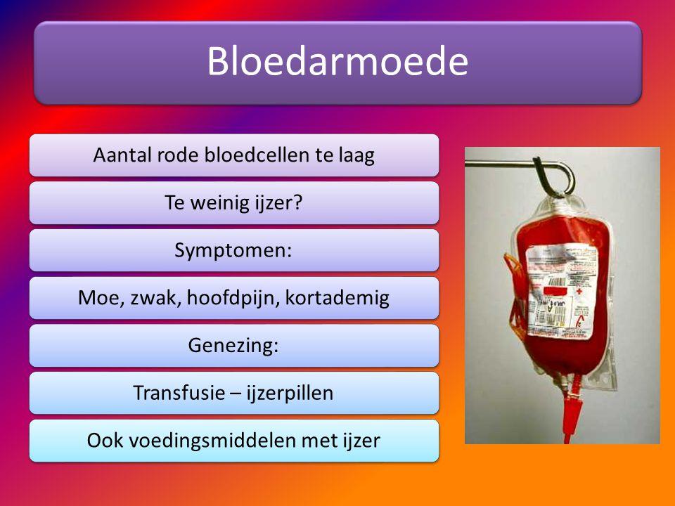 Bloedarmoede Aantal rode bloedcellen te laag Te weinig ijzer