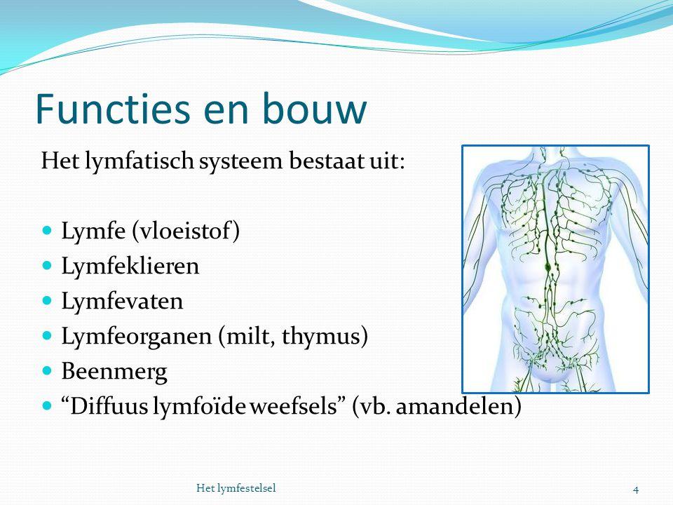 Functies en bouw Het lymfatisch systeem bestaat uit: Lymfe (vloeistof)