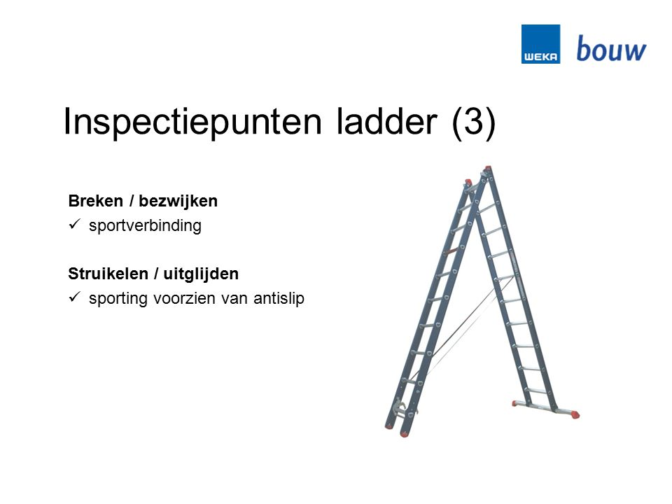 Inspectiepunten ladder (3)