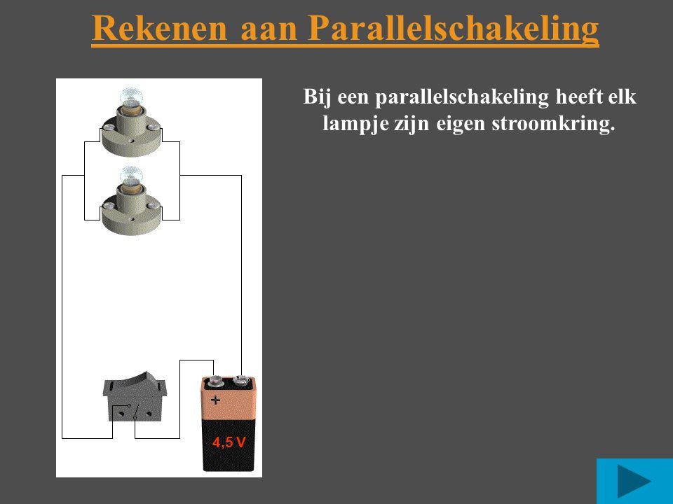 Rekenen aan Parallelschakeling