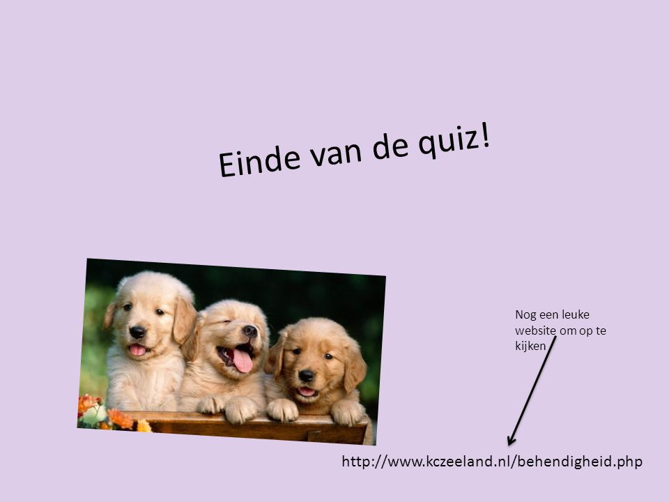 Einde van de quiz! http://www.kczeeland.nl/behendigheid.php