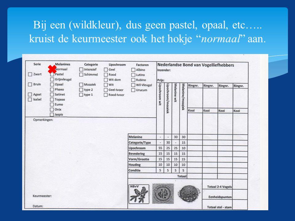 SKNN-Themadag 13-06-2015 Bij een (wildkleur), dus geen pastel, opaal, etc…..