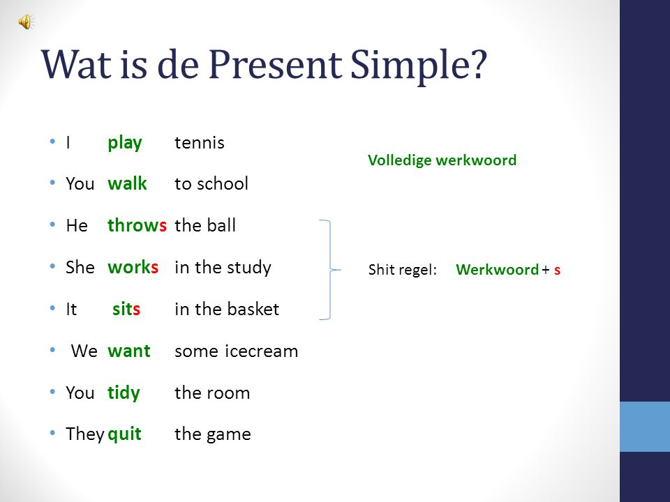 Wat is de Present Simple