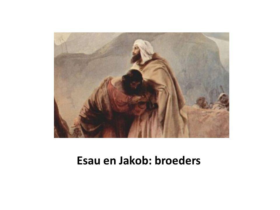 Esau en Jakob: broeders