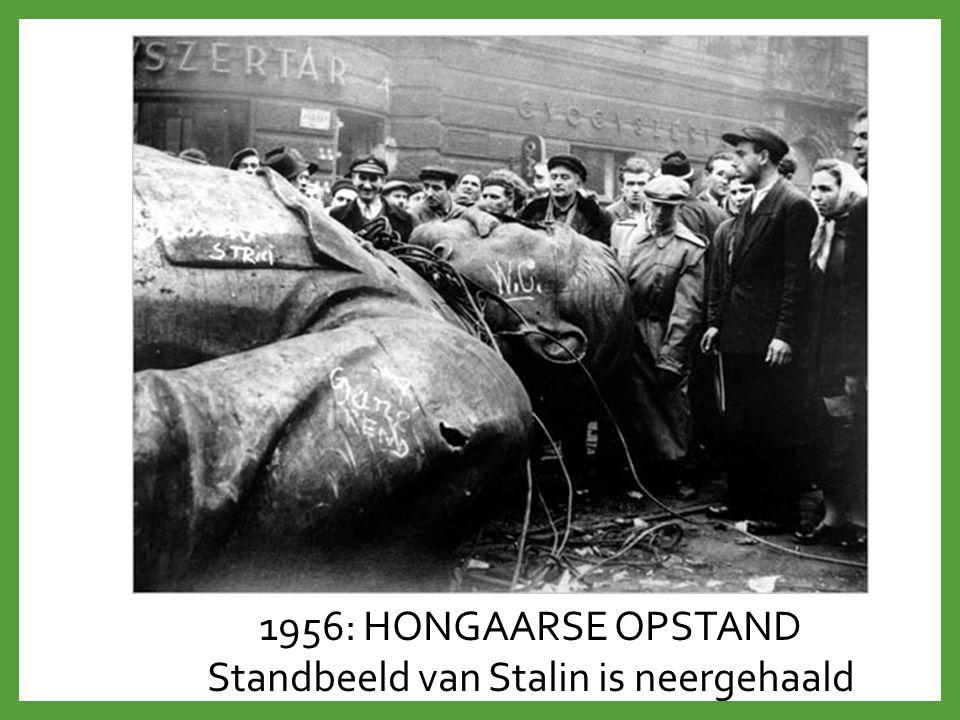 Standbeeld van Stalin is neergehaald