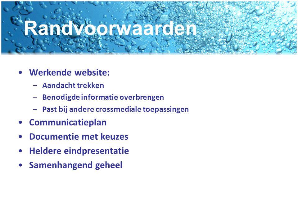 Randvoorwaarden Werkende website: Communicatieplan