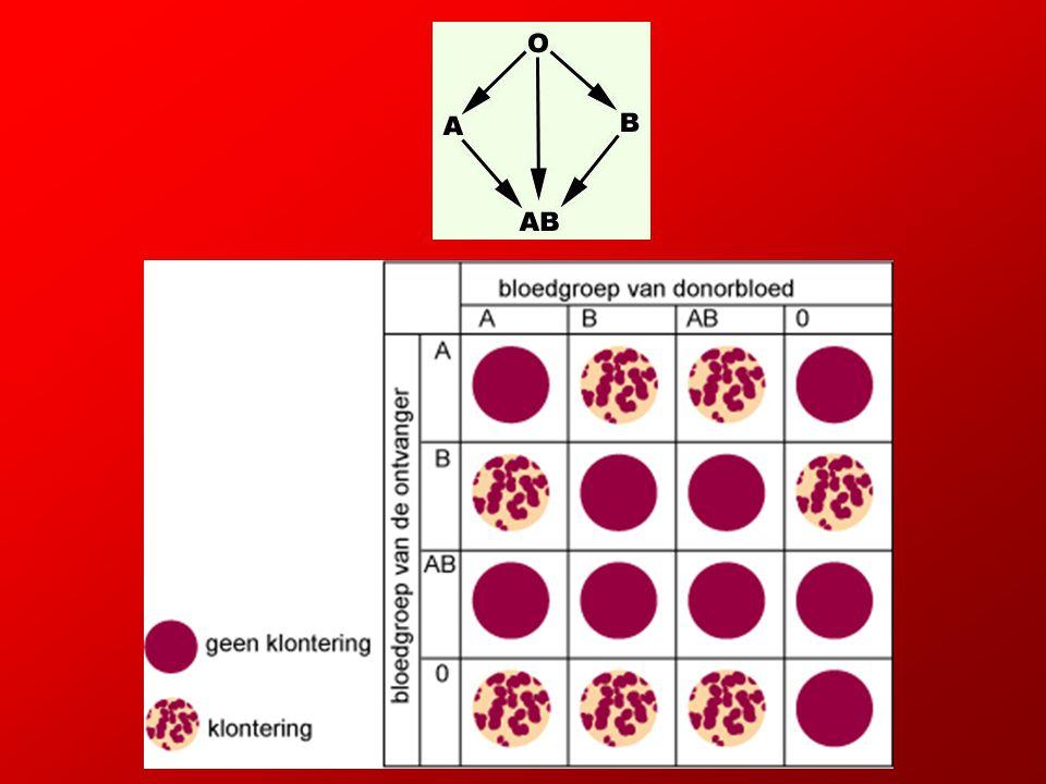 Het bloedplasma van de bloedontvanger mag geen antistoffen bevatten tegen de antigenen van het donorbloed.