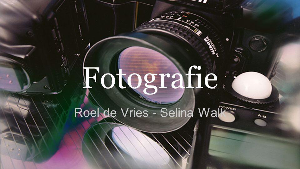 Roel de Vries - Selina Walk