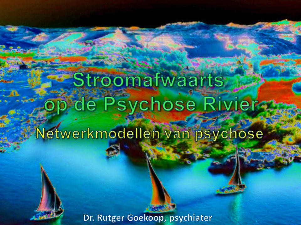 Netwerkmodellen van psychose