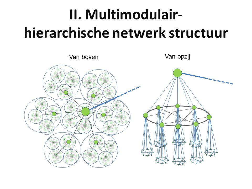 II. Multimodulair- hierarchische netwerk structuur