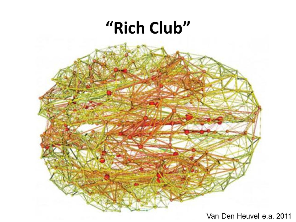 Rich Club Van Den Heuvel e.a. 2011