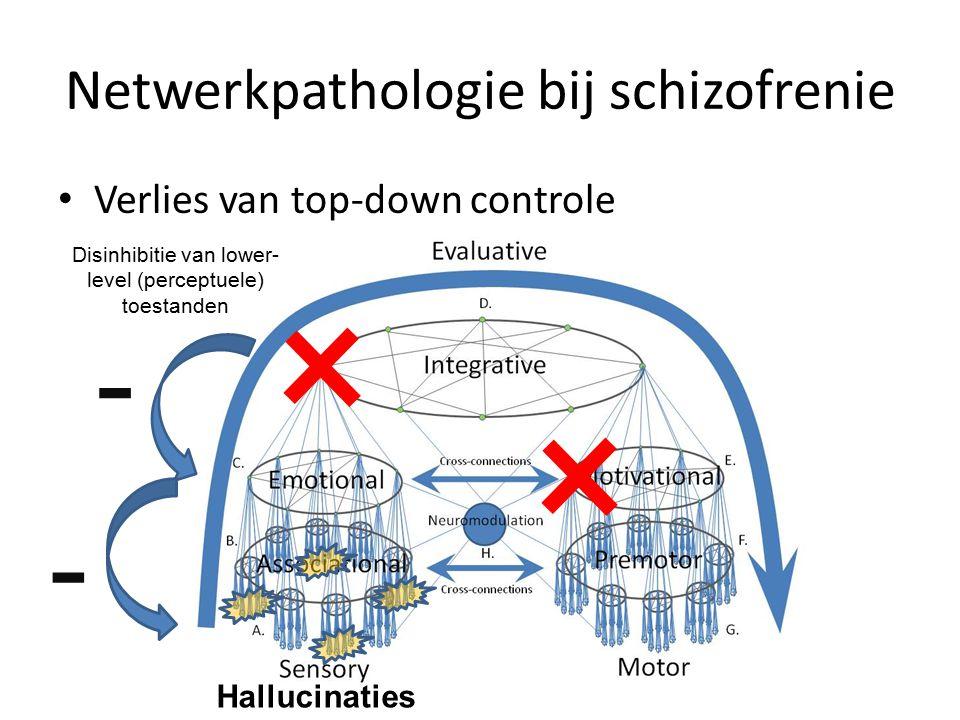 Netwerkpathologie bij schizofrenie